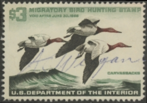 Scan of RW32 1965 Duck Stamp