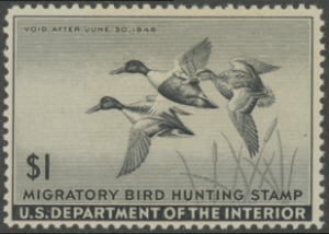 Scan of RW12 1945 Duck Stamp