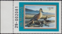 Scan of 1988 Montana Duck Stamp