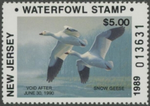 Scan of 1989 New Jersey Duck Stamp