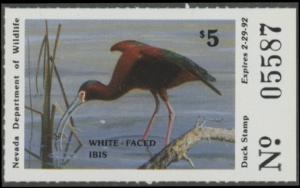 Scan of 1991 Nevada Duck Stamp