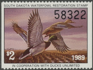 Scan of SD9 1989 Duck Stamp