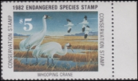 Scan of 1982 Endangered Species Stamp