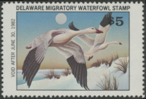 Scan of 1981 Delaware Duck Stamp