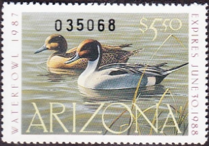 Scan of 1987 Arizona Duck Stamp - First of State