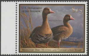 Scan of RW78 2011 Duck Stamp