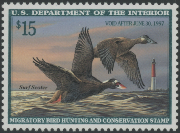 Scan of RW63 1996 Duck Stamp Grade 98