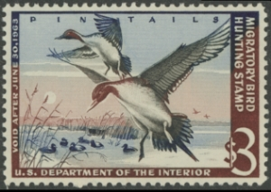 Scan of RW29 1962 Duck Stamp  MNH VF - XF