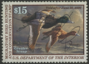Scan of RW66 1999 Duck Stamp