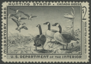 Scan of RW25 1958 Duck Stamp  MNH Fine
