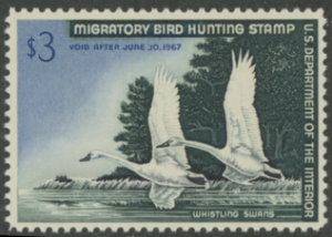 Scan of RW33 1966 Duck Stamp  MNH F - VF