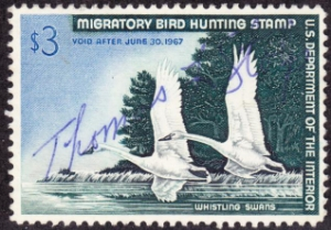 Scan of RW33 1966 Duck Stamp  Used VF